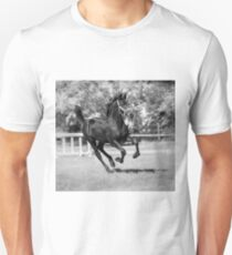 Friesian Foal Running 1 Unisex T-Shirt