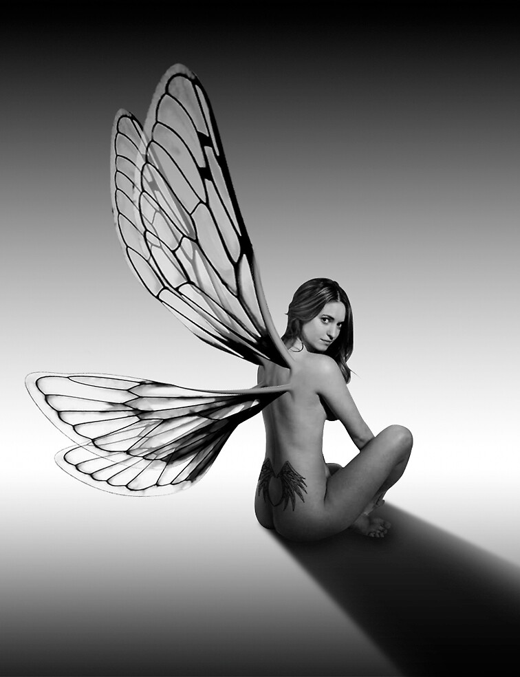 Fairy by Lestat