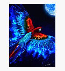 Moon Phoenix  Photographic Print