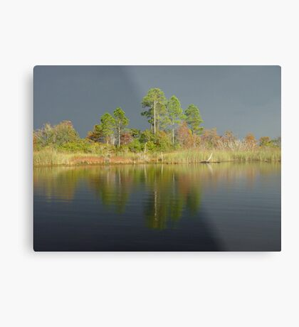 The Five Pines before the Storm Metal Print