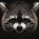 Raccoon 2 by grafoxdesigns