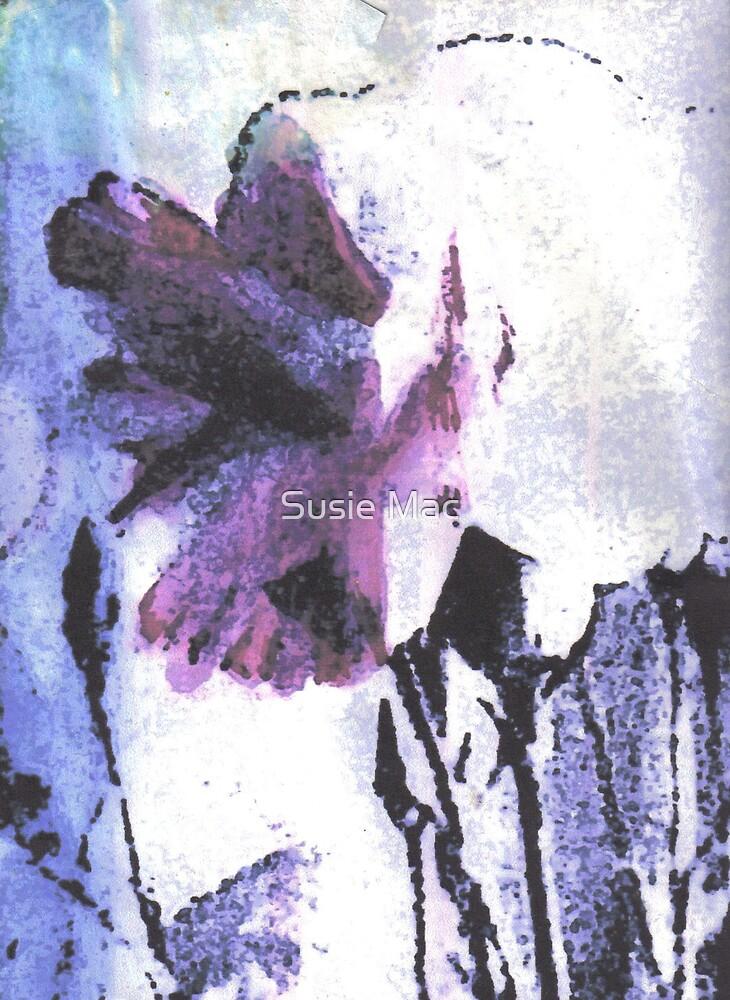 carnation by Susie Mac