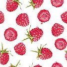 Raspberries! by 4ogo Design