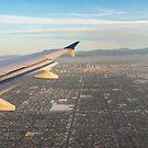 Flying to LA - Southern California's Sprawling Metropolis from a Plane by Georgia Mizuleva