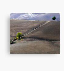 Valley south of Pienza, Tuscany,Italy Canvas Print