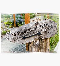 Timberline Trail Sign Poster