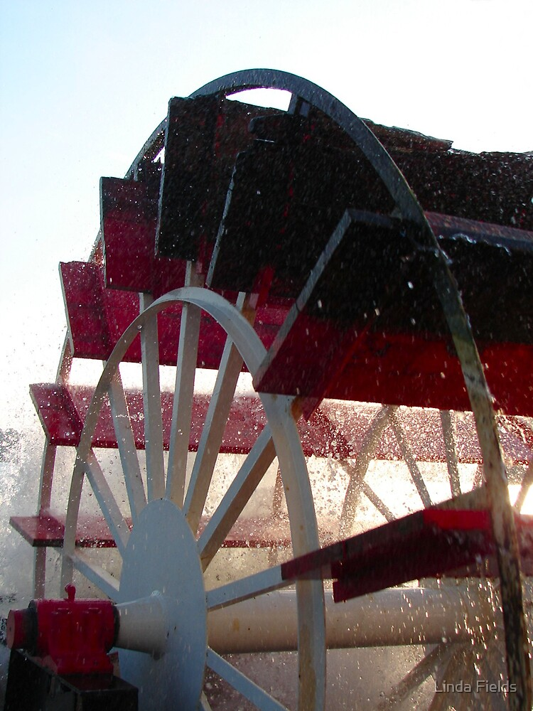 Paddlewheel by Linda Fields