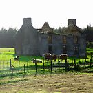Abandoned Farm House, Donegal, Ireland by Shulie1