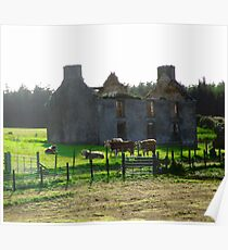 Abandoned Farm House, Donegal, Ireland Poster