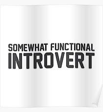 Functional Introvert Poster