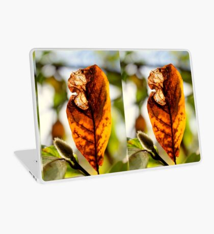 Herbstblatt Laptop Folie