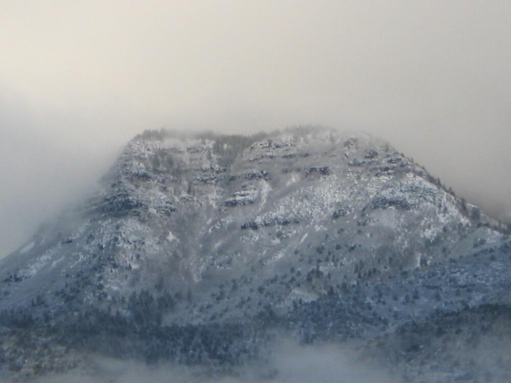 Mingus Mountian by Guss  Espolt