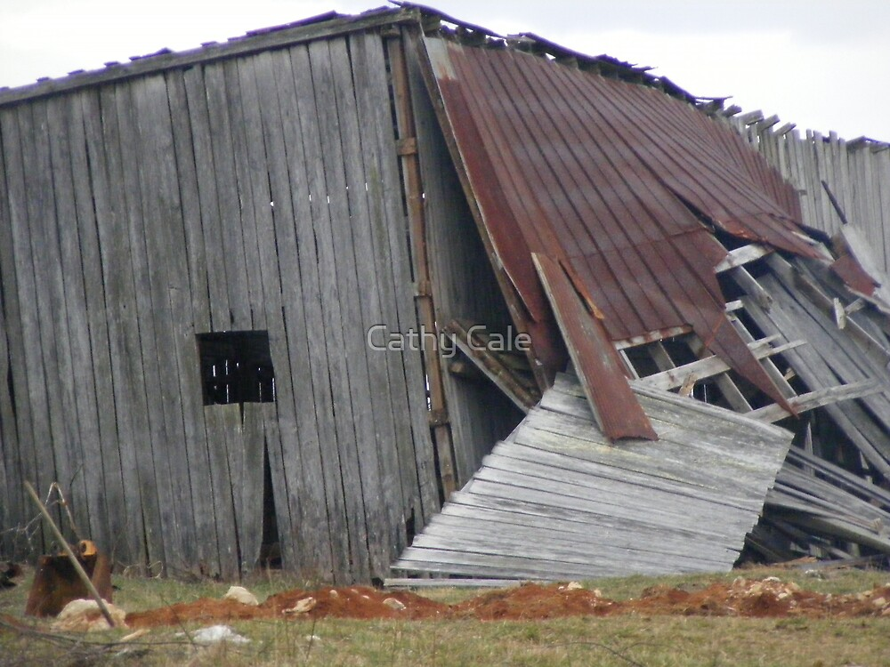 Time for a New Barn by Cathy Cale