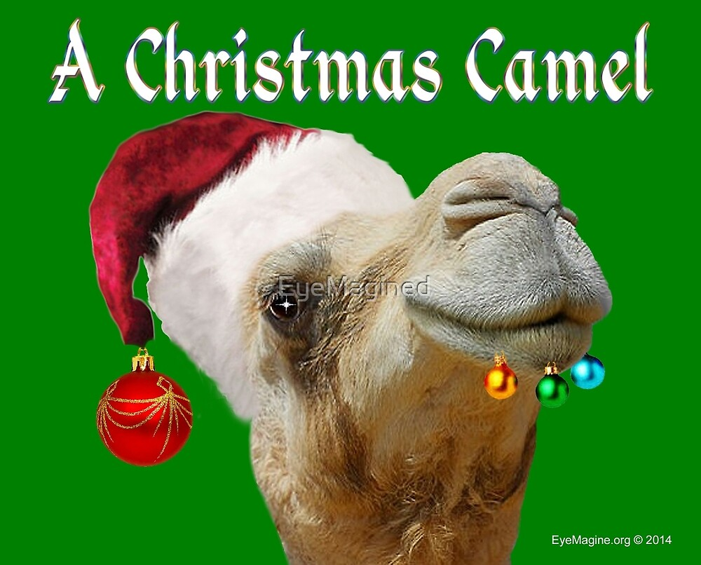 A Christmas Camel by EyeMagined