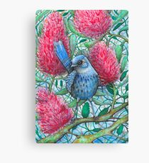 True blue fairy wren  Canvas Print