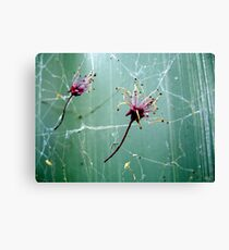Catch Me, I'm Falling Canvas Print