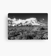Mt Hood and lupines from Pacific Crest Trail monochrome Canvas Print