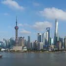 Pudong by Day by David Thompson