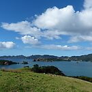 Bay of Islands, NZ by David Thompson