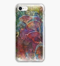 The Atlas Of Dreams - Color Plate 61 iPhone Case/Skin
