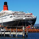 QE2 - The great Lady's Last Journey 2 by Eve Parry