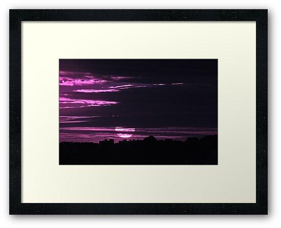Purple Dreams by Love Through The Lens