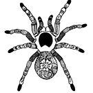 Henna Spider by April Hammond