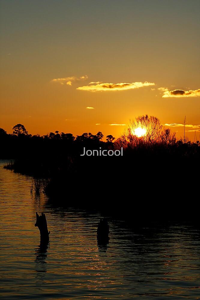 Burning Bush by Jonicool