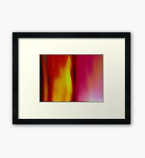 used........ Framed Print