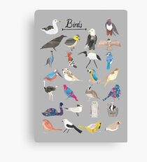Bird ABC Canvas Print