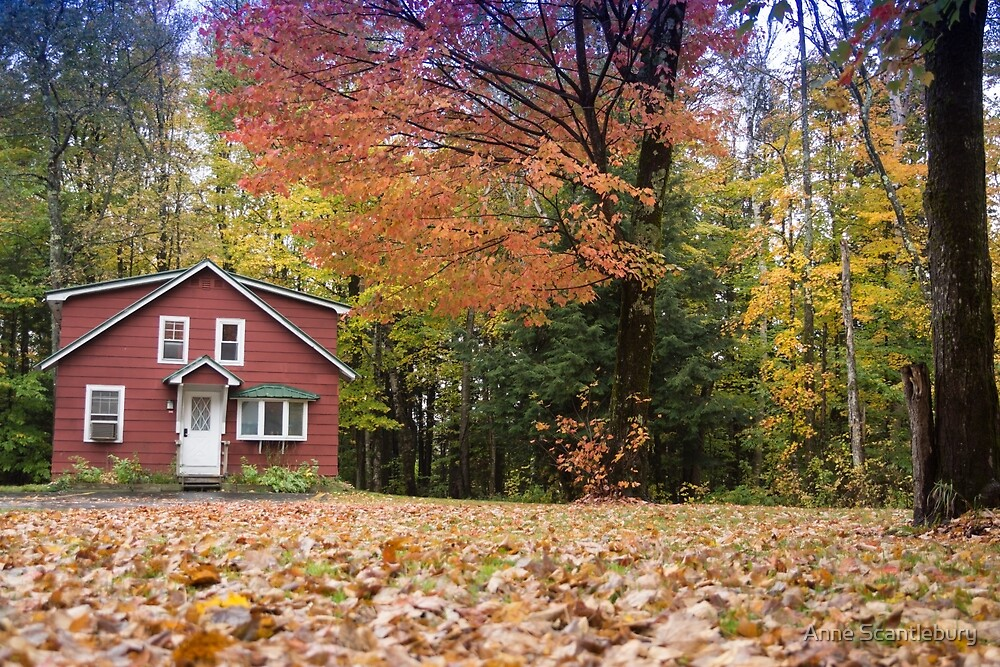 the red house by Anne Scantlebury