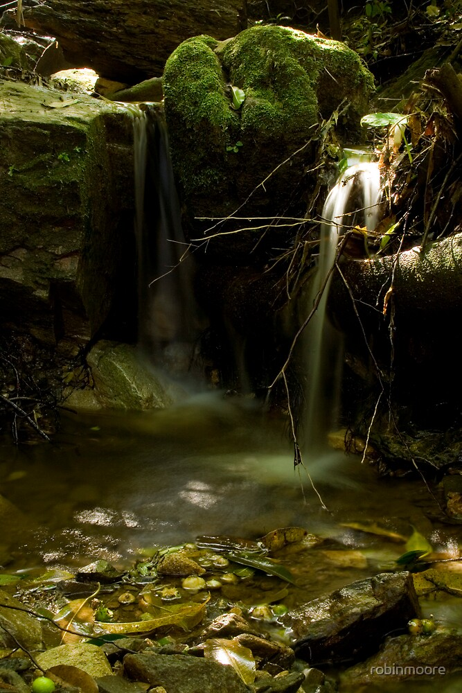 Stream in Colombia by robinmoore