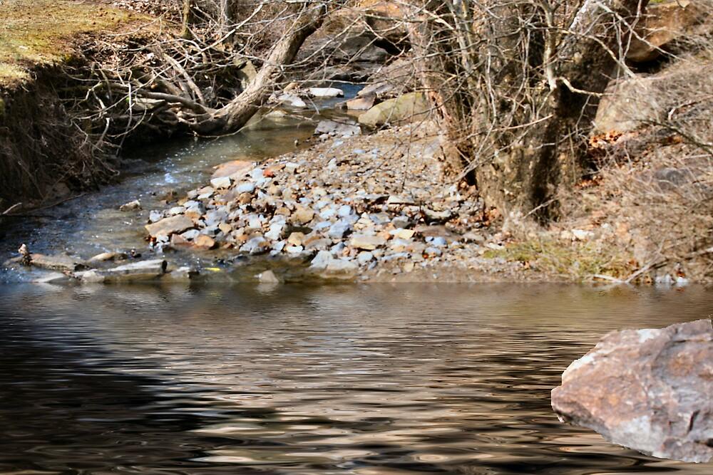 Wading water by shadyuk
