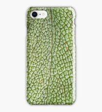 Sage Advise iPhone Case/Skin