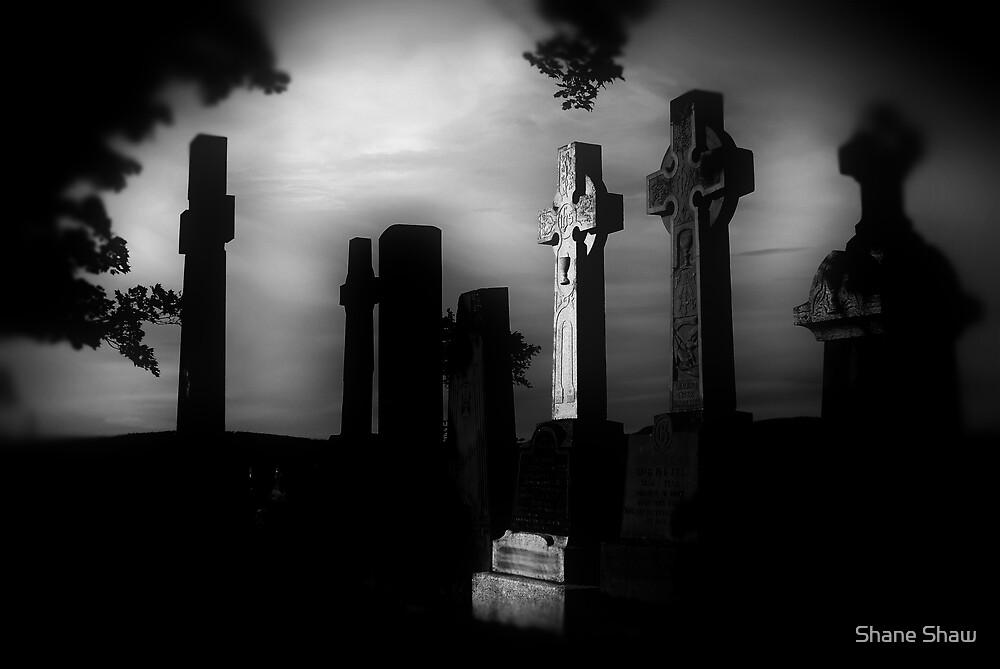 Dark Graveyard by Shane Shaw
