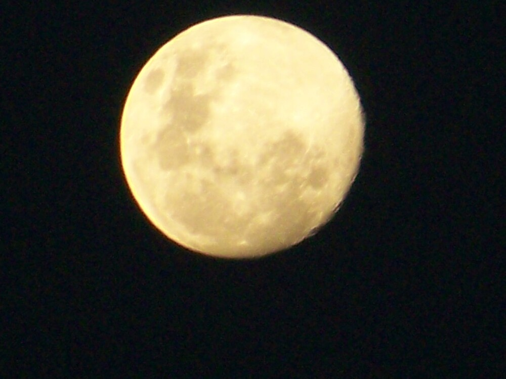 Moon1 by Francois Gericke