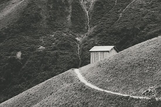 HILLSIDE HUT von Daniel Coulmann