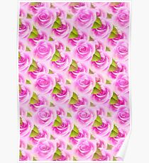 Pink Roses Pattern Poster