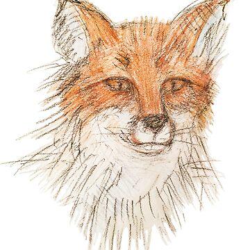 Kilmallie Trails - Red Fox by fkmmck