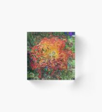 Banksia Abstract Acrylic Block