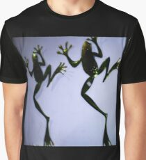 Frog plaques on wall of gift shop Graphic T-Shirt
