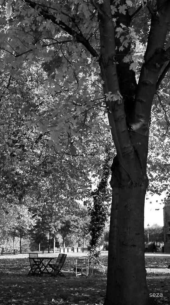 Empty Autumn by seza