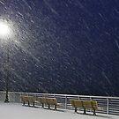 Winter Boardwalk by AnneDB