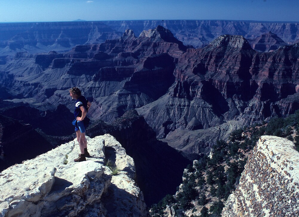 The Grand Canyon and little bitsy I.... by bertspix