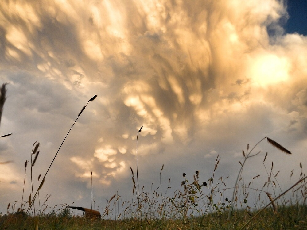 Storm over the Badlands by everyonestravel