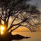 Fiery Sunrise - Like A Golden Portal To Another World by Georgia Mizuleva