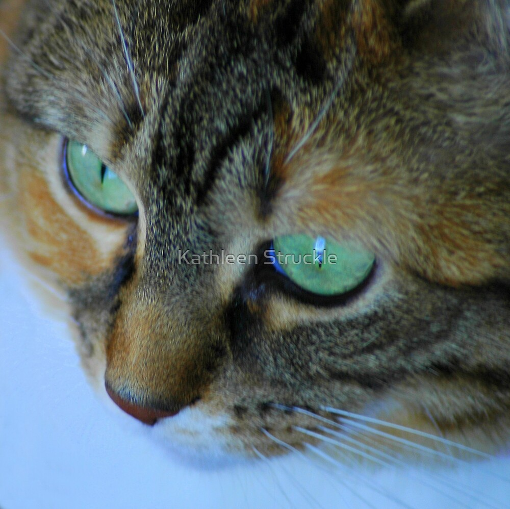 Green Eyes by Kathleen Struckle
