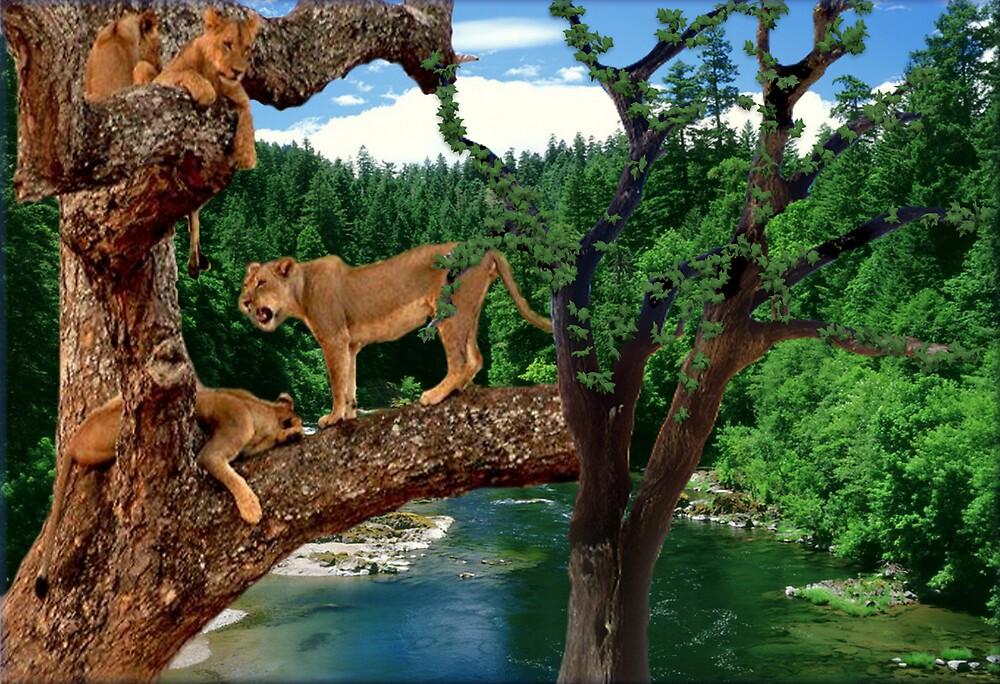 NA760-Amazing Tree Climbers by George W Banks