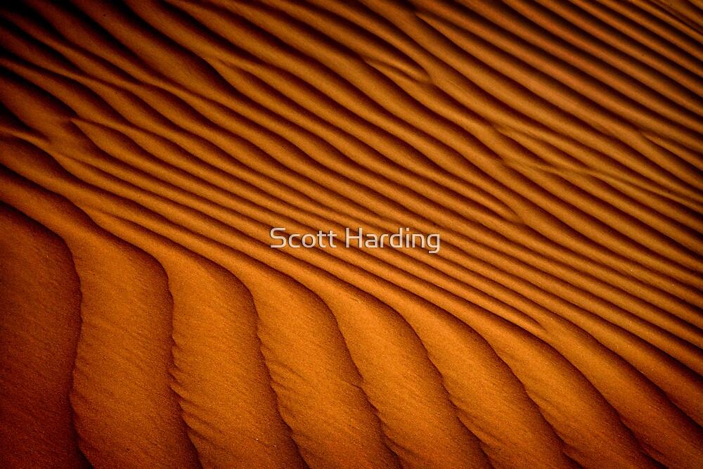 Dune Pattern by Scott Harding