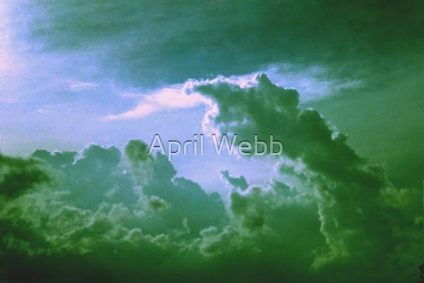 Finger in the Sky by April Webb